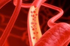 Las células madre del/los cordón/es umbilical/es