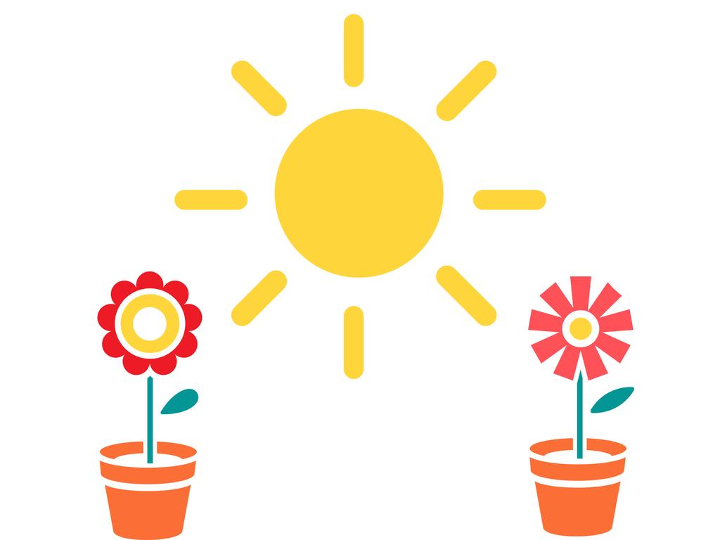 Criando a pares… ¿cuándo ves la luz?