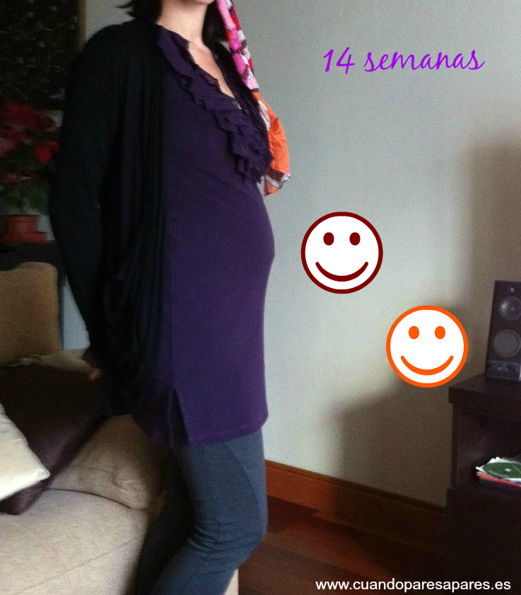 Barriga 7 semanas embarazo gemelar